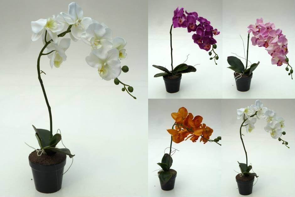 orchidee im topf h50cm orchideen kunstblume topforchidee kuenstlich seidenblume ebay. Black Bedroom Furniture Sets. Home Design Ideas